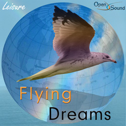 Play track  Flying Dreams full version