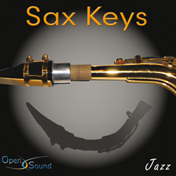 Cd Cover Sax Keys