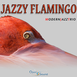 Cd Cover Jazzy Flamingo
