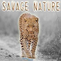 Play track  Savage Nature full version