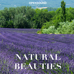 Cd Cover Natural Beauties