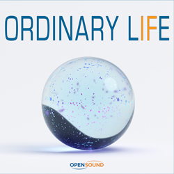Cd Cover Ordinary Life